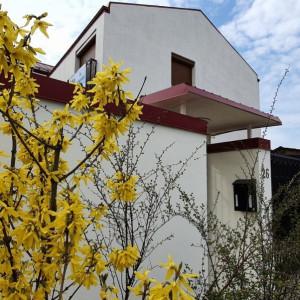 Tunari - 9 Mai, individuală, 4 dormitoare, birou, atelier pictura, teren 743 mp